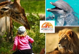 Αττικό Πάρκο Hμερήσιο εισιτήριο για το Αττικό Ζωολογικό Πάρκο και τα Θαλάσσια Θηλαστικά με 7,5€ για παιδιά και με 9,5€ για ενήλικες