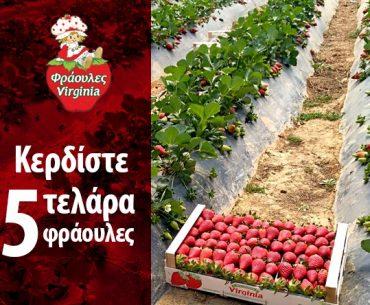 Διαγωνισμός Γίγας Φρουτεμπορική με δώρο 5 τελάρα φράουλες